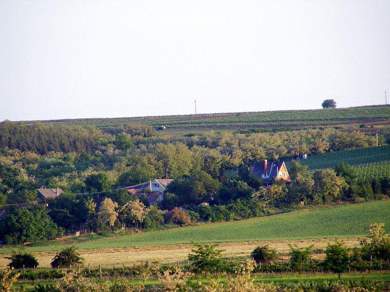 Nagyréde, Kecskesajt, Nagyrédei Kecskefarm